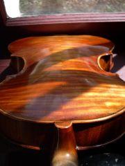 2007 viola