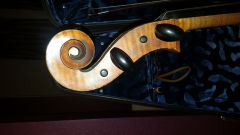 Rocca cello scroll 1