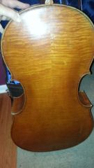 Rocca cello back 1
