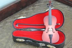 Czech violin case open violin upright