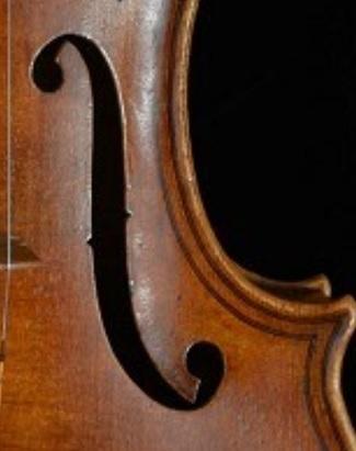 Viola F.jpg