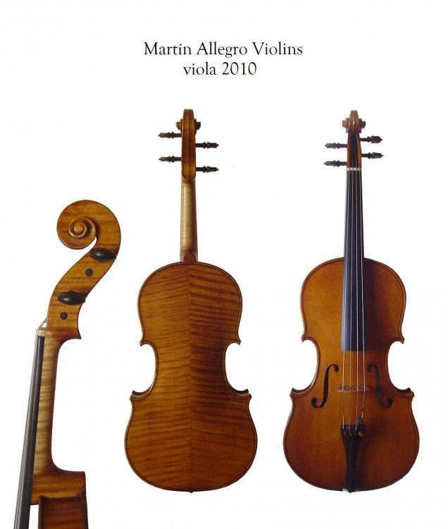MartinAllegroViola2010.jpg