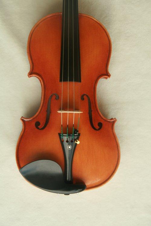 violin_080.JPG