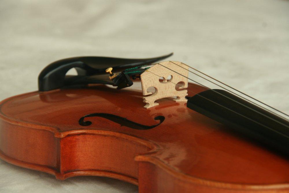 violin_097.JPG