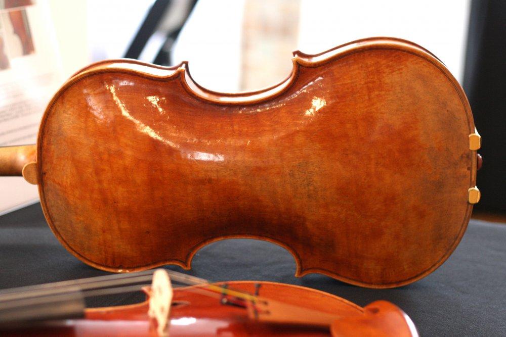 feng-jiang-viola-back.thumb.jpg.8b1fd5c787cf6be8b12a05368528b49a.jpg