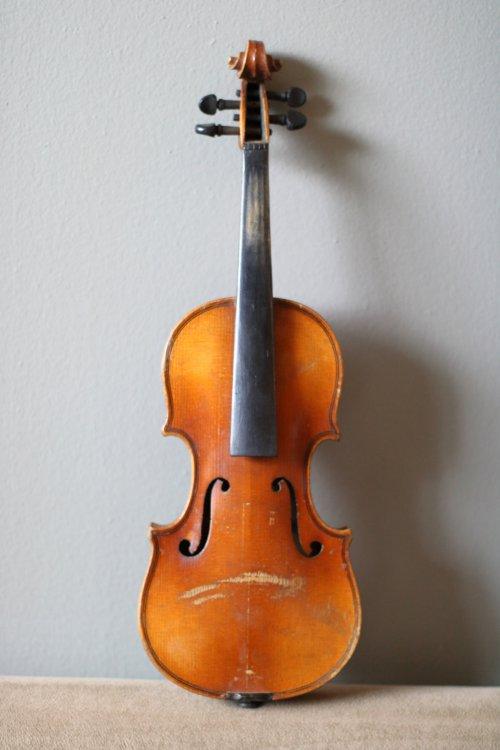 golden-1-8-violin-bassclef-maestronet-1.jpg
