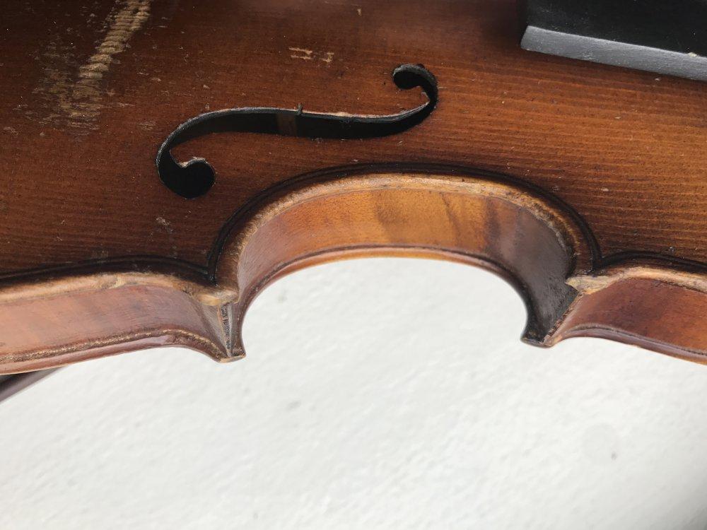 golden-1-8-violin-bassclef-maestronet-14.jpg