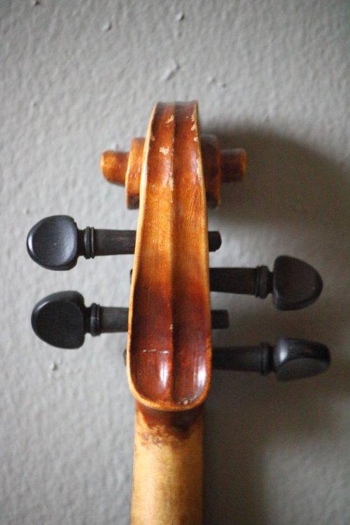 golden-1-8-violin-bassclef-maestronet-5.jpg