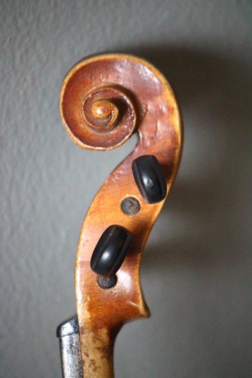 golden-1-8-violin-bassclef-maestronet-6.jpg