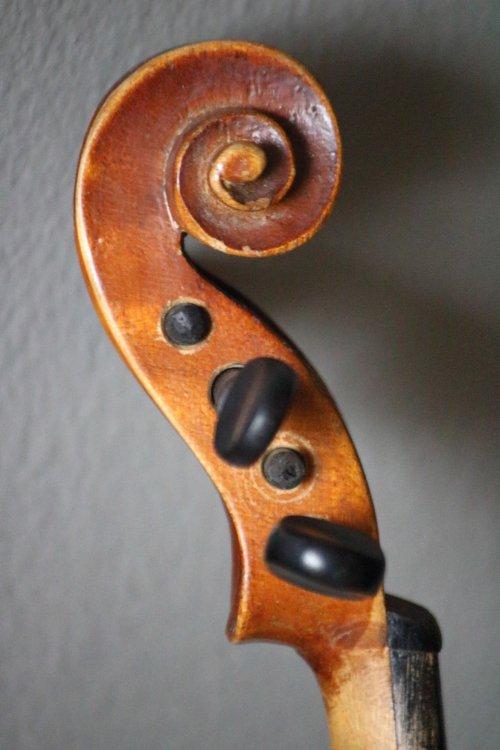 golden-1-8-violin-bassclef-maestronet-7.jpg