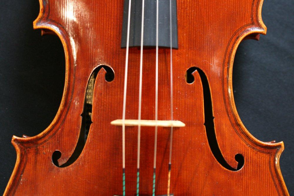 polstein-and-white-viola.jpg