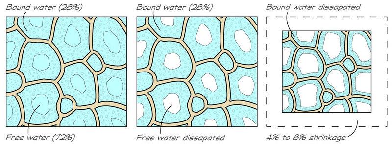 bound vs free water.jpg