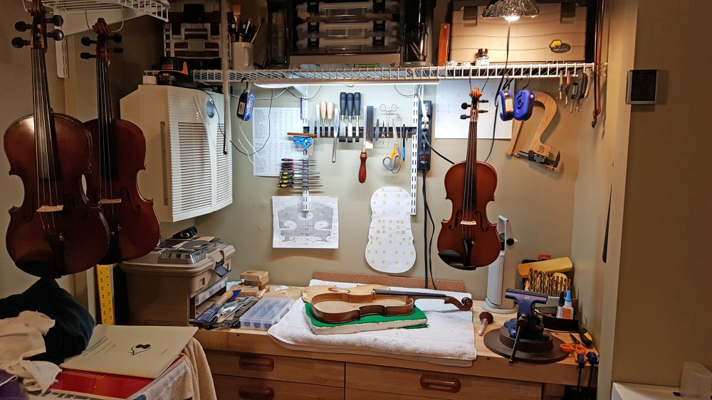 Violin_Workshop_20180215_040506.thumb.jpg.ee5fda05f659e50bb5c0d77b75925ae9.jpg