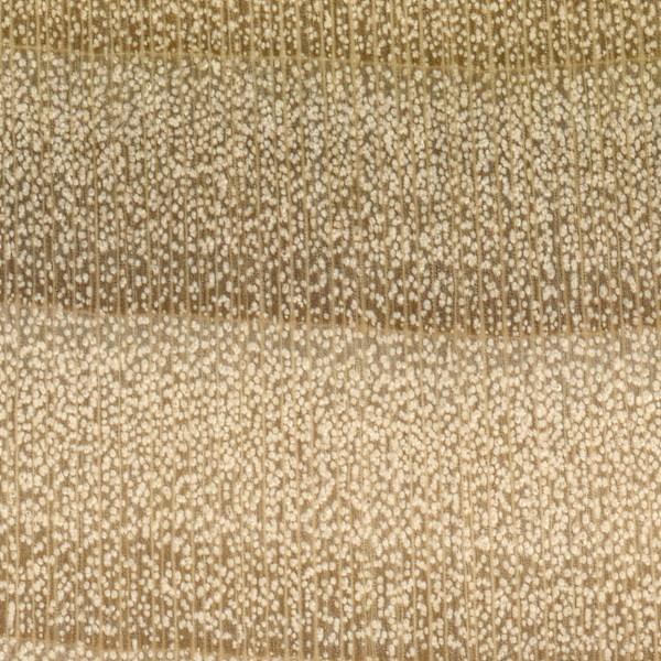 yellow-poplar-endgrain-zoom.jpg.07f83ba3dd38121f464dd1d08f1585e0.jpg
