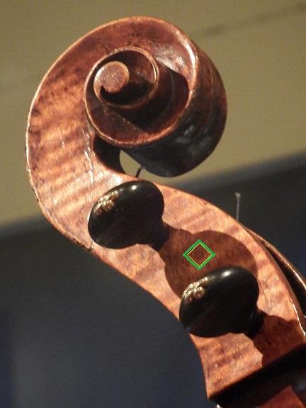 AA 1536-1560c - SWL Viola.JPG