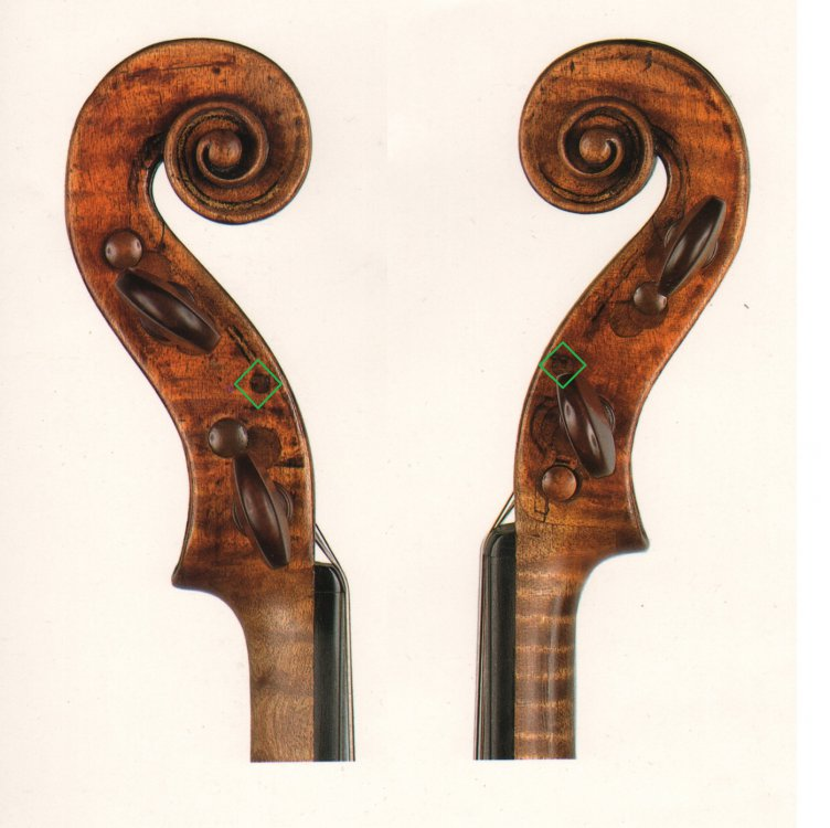 AA 1566 - Carlo IX violin.JPG