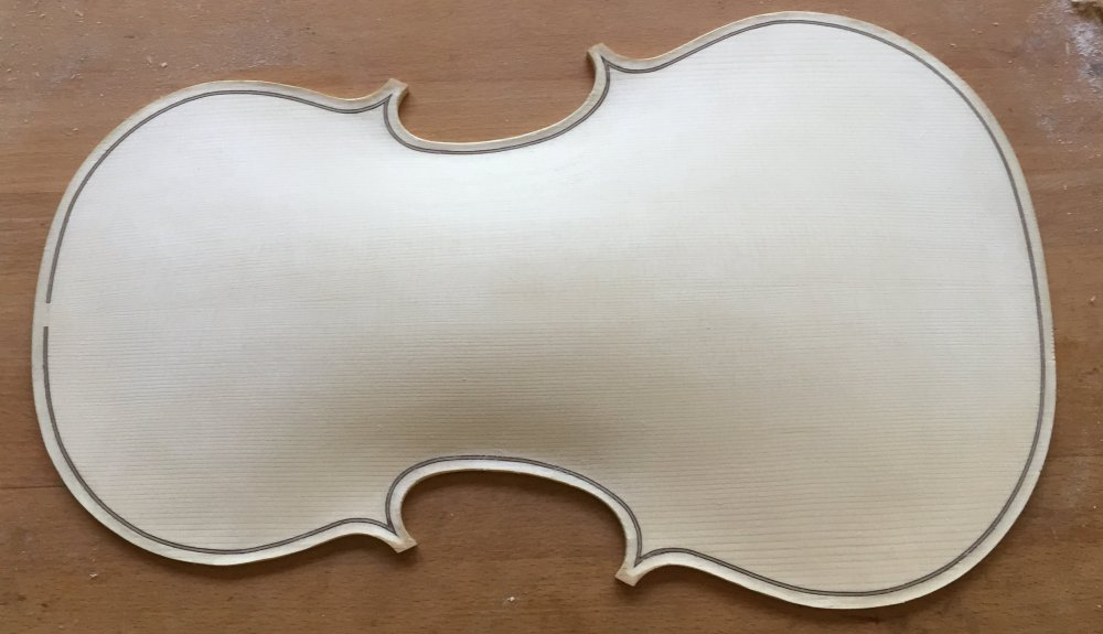 Viola arching_front_almost final_no templates.jpg