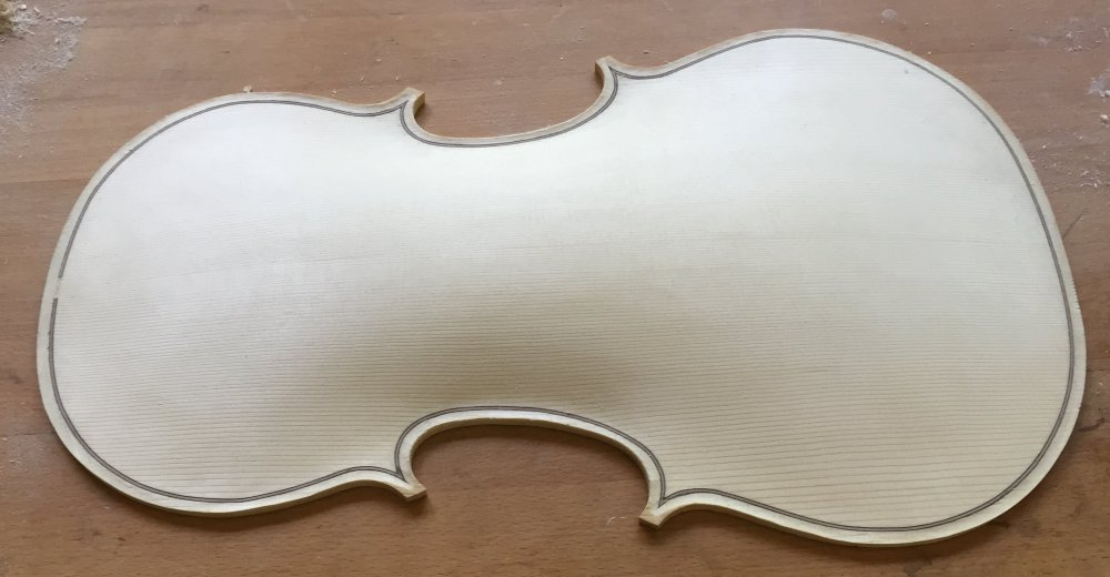 Viola front_side arching_almost final.jpg