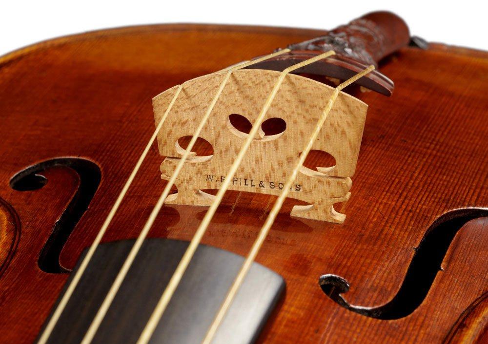 Lady-Blunt-Stradivarius-Violin-of-1721-2.jpg.e40b9fa65fa0c34221de6b76adad0d15.jpg